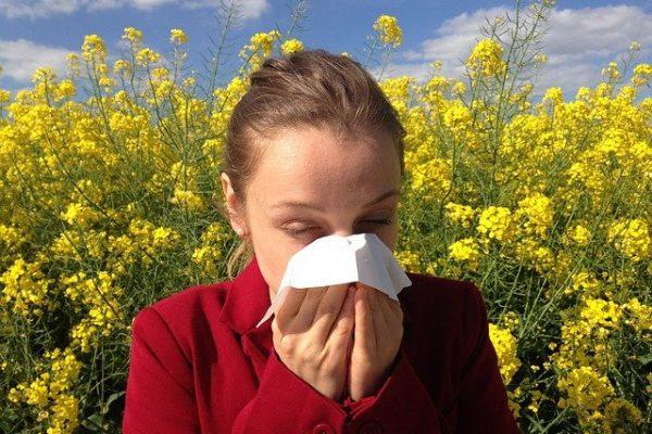 Comment se prémunir d'une allergie au pollen?